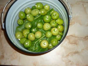 zelenye-pomidory-bochkovye2