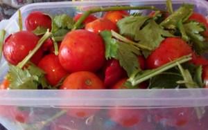 kvashenye-pomidory-kak-bochkovye3