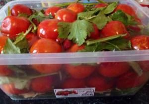 kvashenye-pomidory-kak-bochkovye6