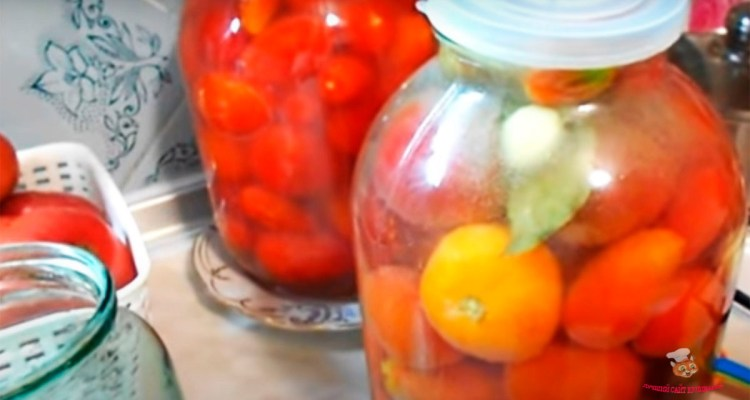 solenie-pomidori-na-balkone2