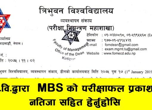 MBS Second Semester, Examination Result 2019, Tribhuvan University MBS Second Semester exam result, MBS Examination Result 2019, Tribhuvan University exam result,