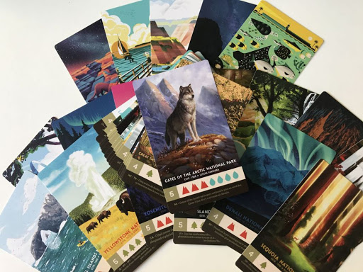 Quelques cartes parmi d'autres issues du jeu Parks