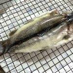 渓流魚を干す イワナの干物