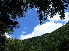 160809三峰川見上げる空