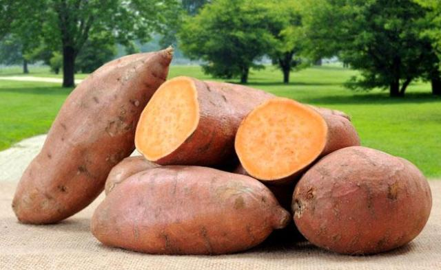 Eat Sweet Potato With Skin - Sakshi