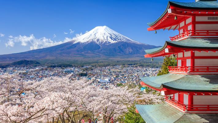 Mt.Fuhji and cherry blossom