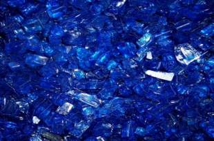 20110402_Blue-Vein-resized