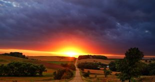 591498-beautiful-landscape-at-sunset