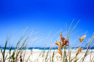 clear_beach_sky-wide