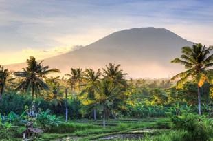 image-countryside