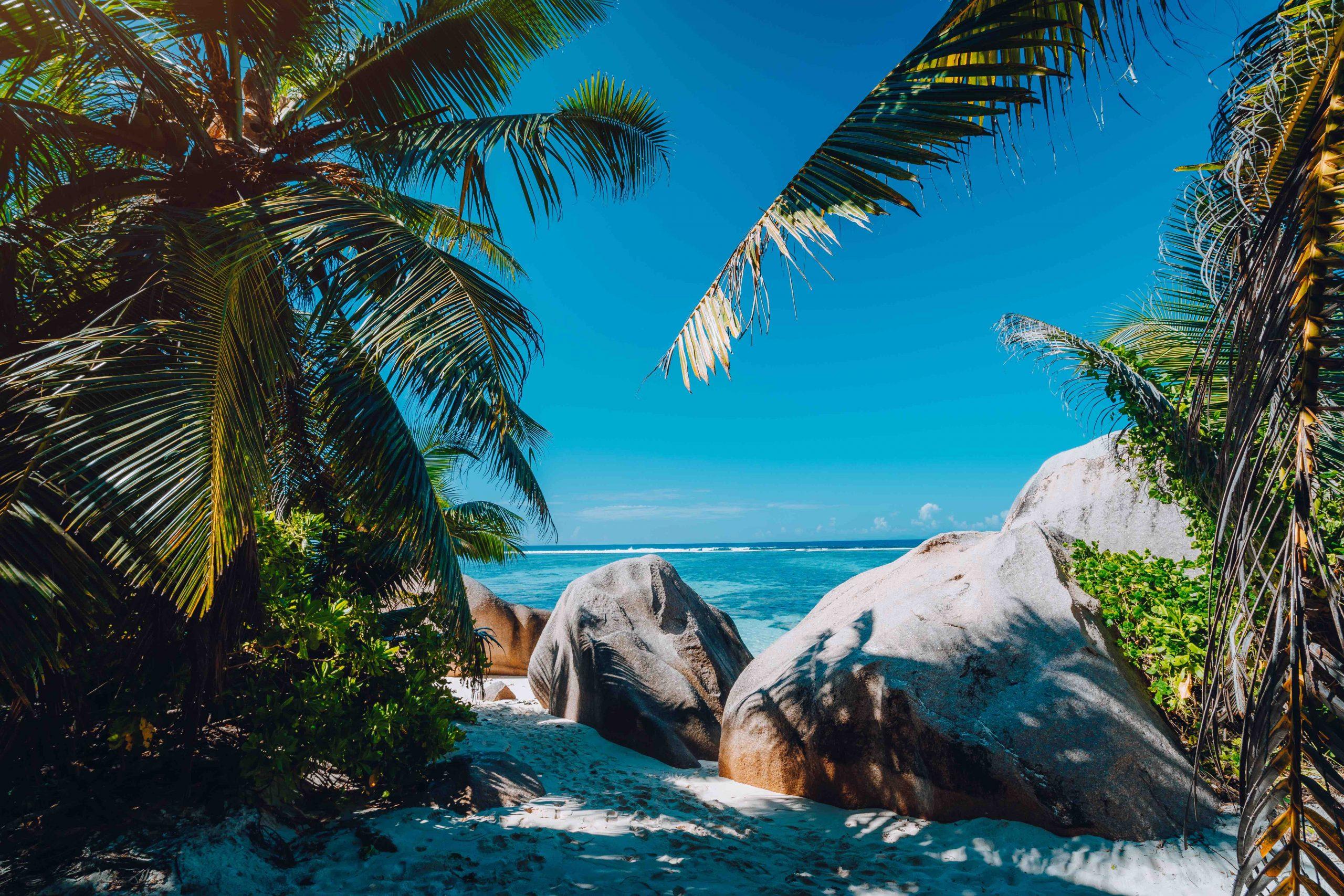 Famous tropical beach Anse Source d'Argent natural palm shade, granite boulders, La Digue Island, Seychelles