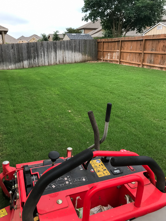 San Antonio Lawn Care Weed Control and Fertilizer