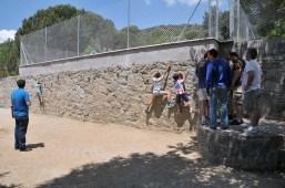 Campamento Padres Hijos (16)