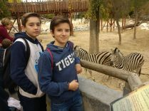En el ZOO de Madrid 43.12