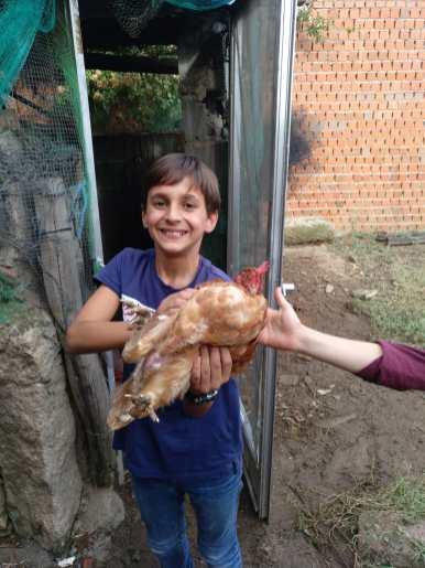 Mohedas de la Jara (7)