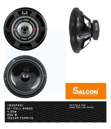 10″ Full Range Woofer