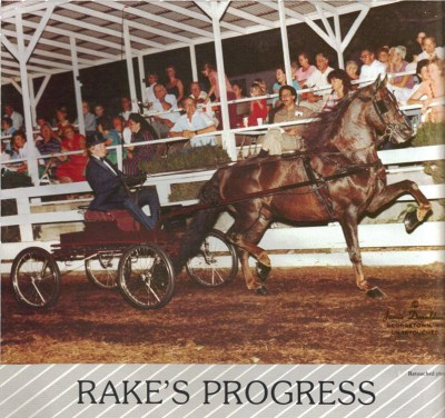 Rakes Progress Harness Mida