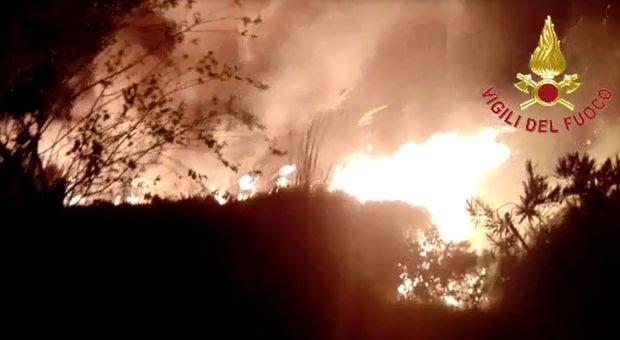 Incendio Cesine settembre 2018