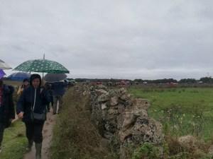 Dal Dolmen Gurgulante Alla Via Francigena passeggiata #NoTap