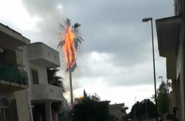E' successo a Martano nel primo pomeriggio. Un fulmine ha colpito un albero di palma alto una ventina di metri, incendiandolo. Tanta paura per una famiglia, che ha visto incendiarsi parti della casa.