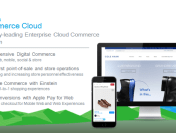 Commerce Cloud – Shopping Index Report
