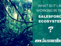 What's it like working in the Salesforce Ecosystem?