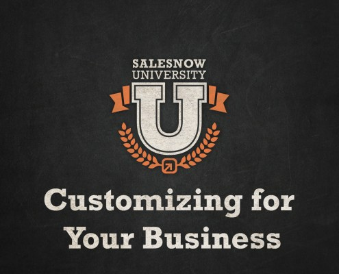 _Customizing SalesNOW