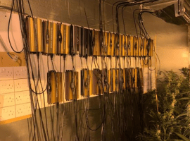 Police uncovered the cannabis plants, alongside a highly sophisticated filtration system. Image Credit: GMP