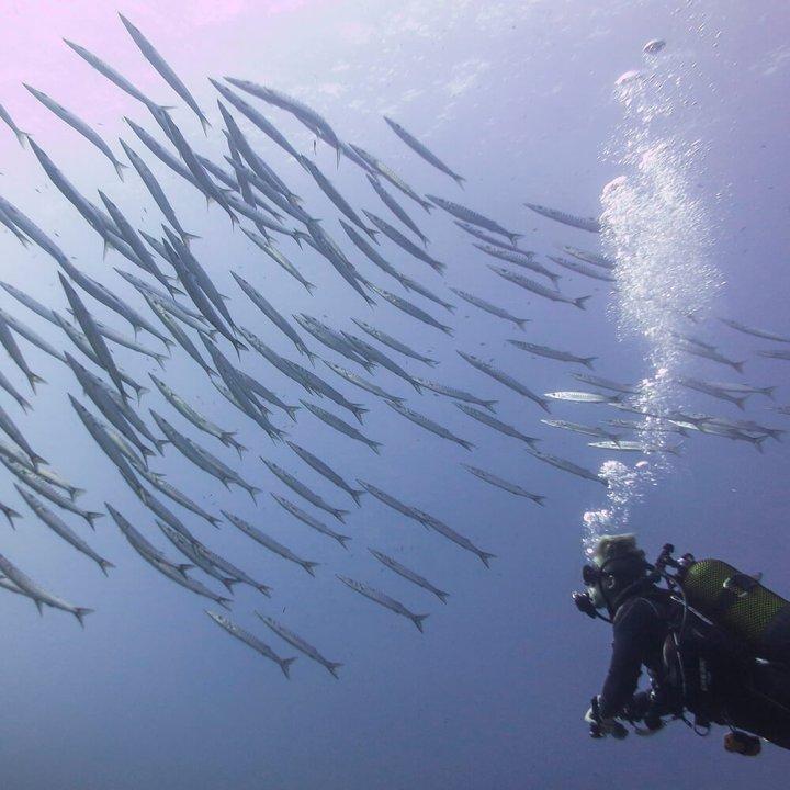 PADI Advanced Open Water Diver Course | S'Algar Diving Menorca