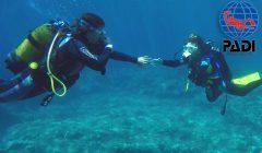 PADI Discover Scuba Diving DSD Try-Dive in Menorca with S'Algar Diving