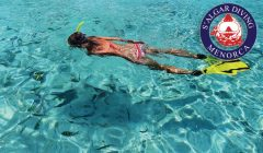 Guided snorkelling and boat excursions   S'Algar Diving, Menorca