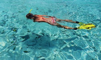 Snorkel en la Reserva Marina Isla del Aire