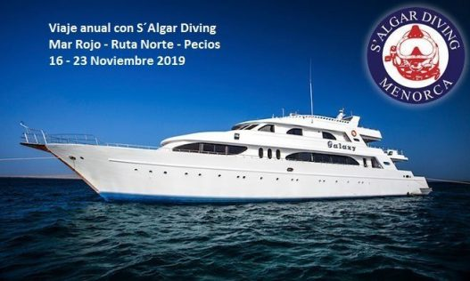 Viaje anual con Salgar Diving Menorca. Noviembre 2019 a bordo de MY GALAXY