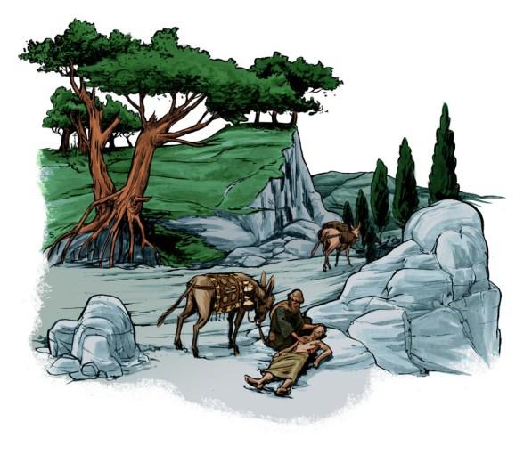 Textbook illustration