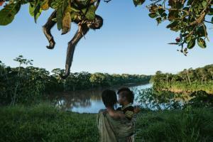 human face of Manu Park