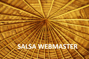 SALSA Website and Social Media Team (5-20-20)