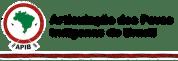 APIB (Articulação dos Povos Indígenas do Brasil) Alerts (4-23-20)