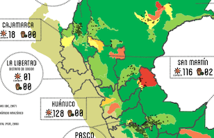 cooperaccion covid-19 amazonia peruana
