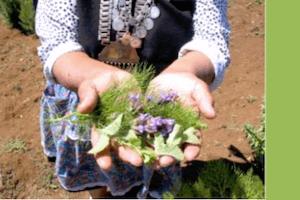 Centro para la formación y desarrollo de la salud del pueblo mapuche Ta Iñ Xemotuam