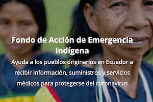 Fondo de Acción de Emergencia Indígena