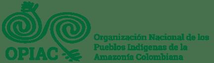 Comisión Nacional de Territorios Indígenas: Rechazo consulta previa virtual en Colombia (4-14-20)