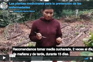 Sacha Warmi Video
