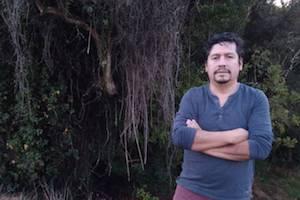 """Covid-19 en la Araucanía: """"Si la desigualdad ha aflorado más con la pandemia, en la población mapuche el estrago es peor"""" (5-11-20)"""