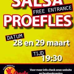 Proeflessen Salsa 28 en 29 maart 2017 in Leeuwarden