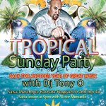 Caribbean Garden Tropical Sunday