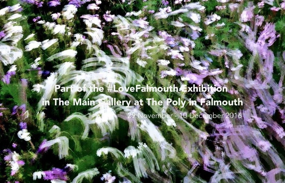 loveFalmouth Exhibition banner in 2016-2017