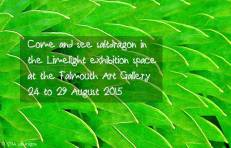 Limelight exhibition notice in 2015