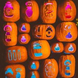 pumpkin nights utah