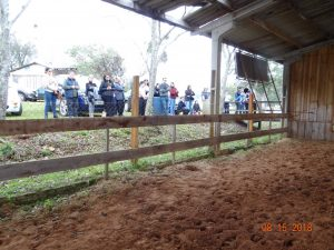 39500574_228042114477421_5903538724238524416_n-300x225 Centro de Ecoterapia comemora 3 anos de instalação aqui em Salto do Jacuí.