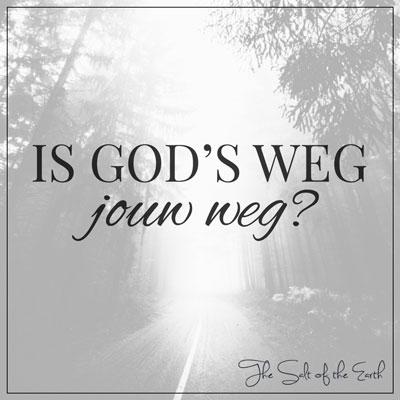 Gods weg jouw weg